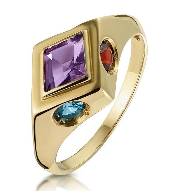 Amethyst Citrine Blue Topaz and Garnet Signature Ring in 9K Gold - image 1